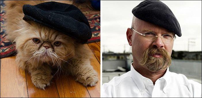 Khi mèo bắt chước điệu bộ sao: Ai yêu hơn nào?