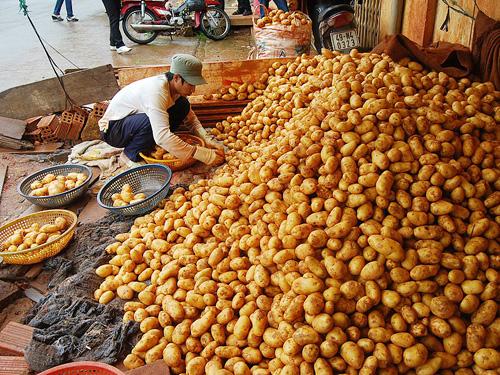 Nông sản Trung Quốc
