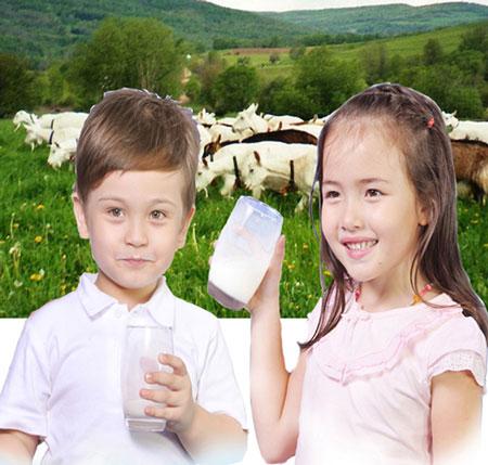 Sữa dê có thực tốt???