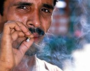 Hút thuốc lá gây bệnh COPD? - Ảnh 1