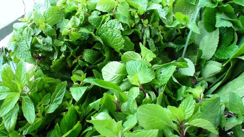Mẹo vặt sử dụng gia vị và rau thơm