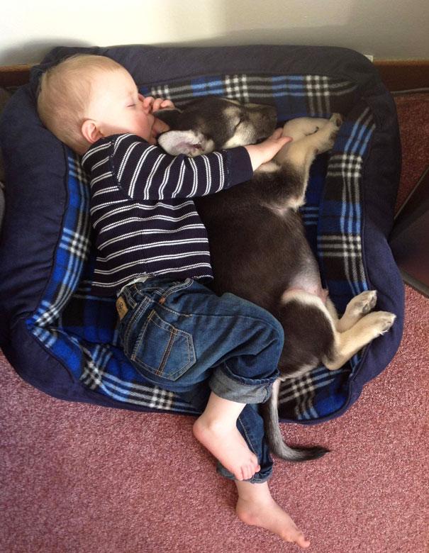 Ngộ nghĩnh hình ảnh các bé với vật nuôi - Ảnh 2