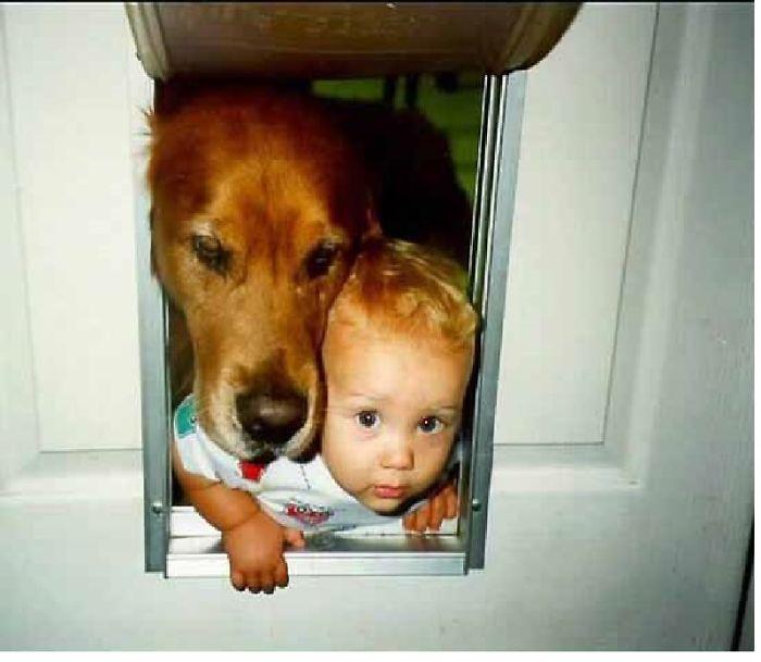 Ngộ nghĩnh hình ảnh các bé với vật nuôi - Ảnh 6