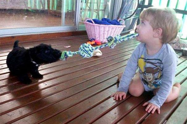 Ngộ nghĩnh hình ảnh các bé với vật nuôi - Ảnh 11