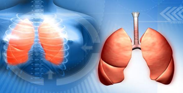 75 triệu người sẽ chết vào năm 2050 do lao kháng thuốc