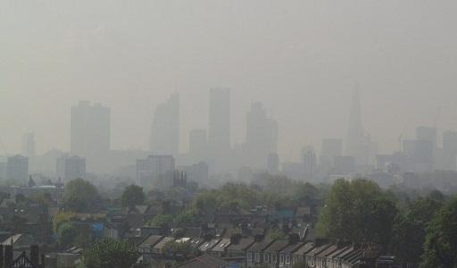Thai nhi tổn thương não vì ô nhiễm môi trường