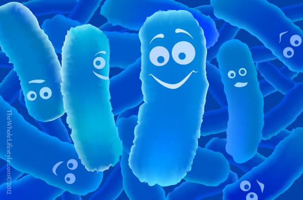 Probiotic: tiêu hóa khỏe - Trẻ lớn nhanh