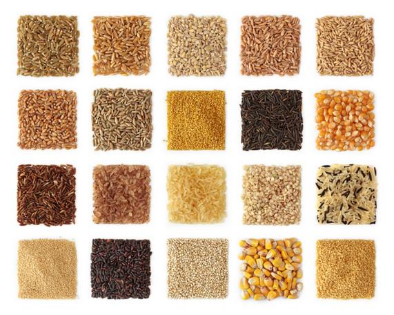 Ngũ cốc cổ: Hành trình về quá khứ tìm tương lai cho TPCN