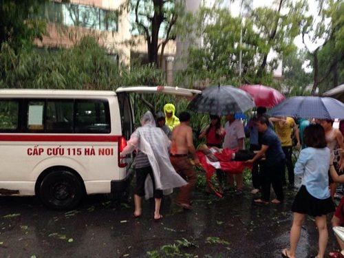Cuồng phong ở Hà Nội: Nhiều người nhập viện do cây xanh, biển quảng cáo đổ trúng