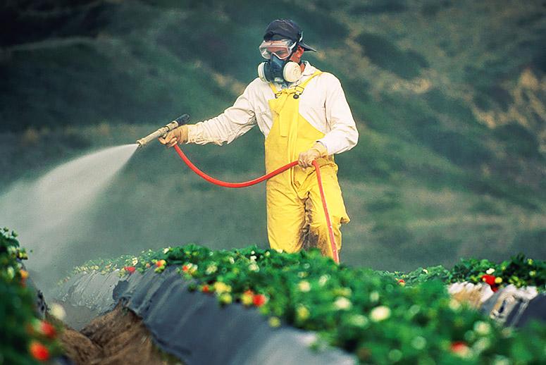 Thuốc bảo vệ thực vật trong thực phẩm hữu cơ, thực phẩm biến đổi gene