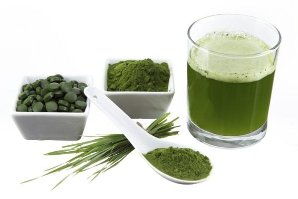 Tảo xoắn spirulina - thực phẩm tần số cao tăng cường sức khỏe