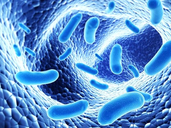 5 thực phẩm giúp bổ sung probiotics tự nhiên và tăng cường miễn dịch