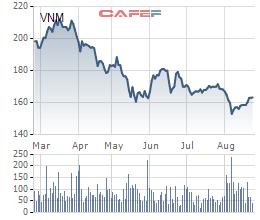 Thị trường nội địa bão hòa, Vinamilk buộc phải trông chờ vào M&A và thị trường quốc tế - Ảnh 3