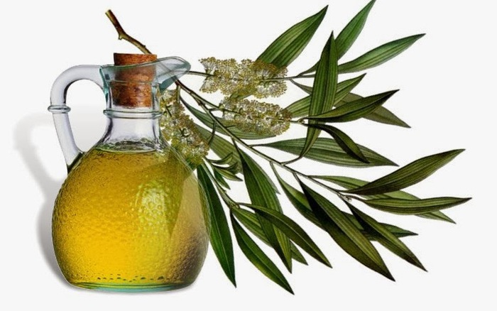 Các loại tinh dầu tốt cho người bệnh eczema - Ảnh 5